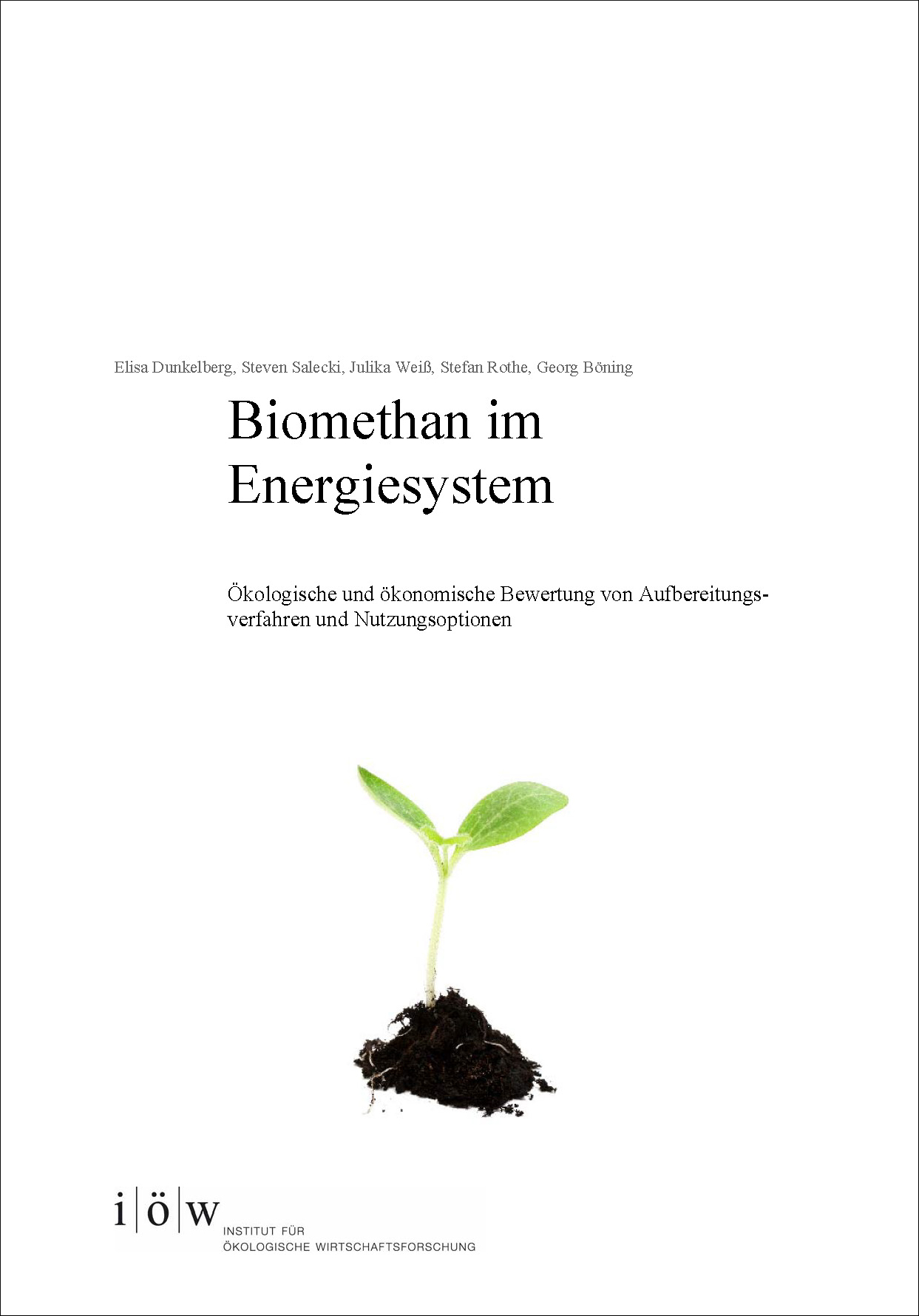 Biomethane in a sustainable energy system