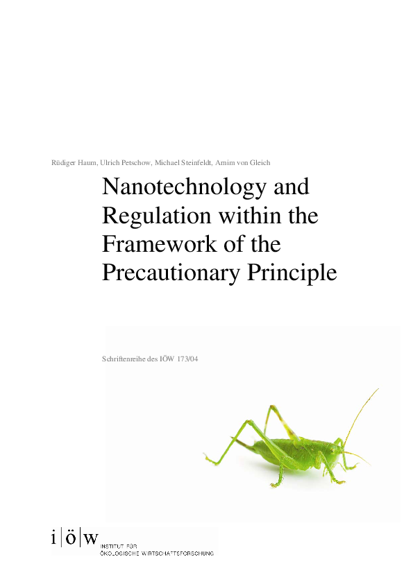 Nanotechnology and Regulation within the Framework of the Precautionary Principle