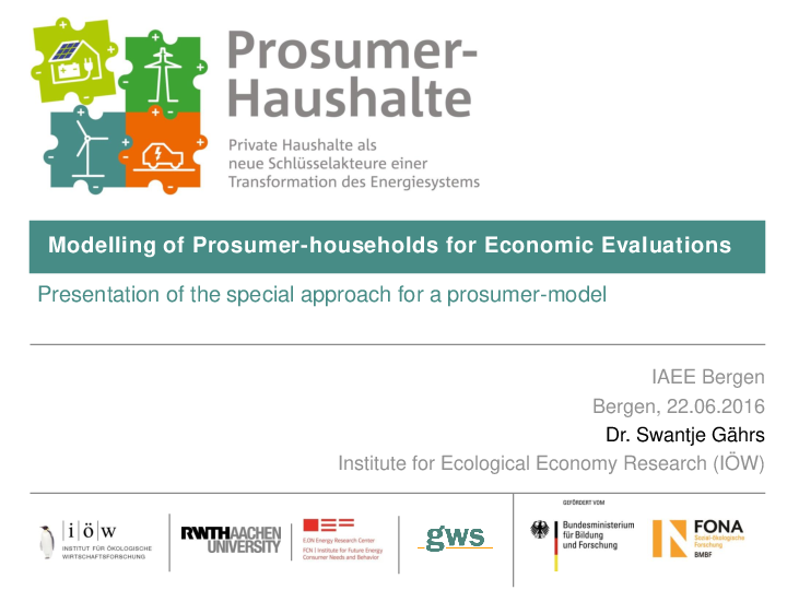 Modelling of Prosumer-households for Economic Evaluations