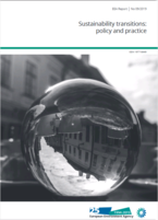 Sustainability transitions: policy and practice