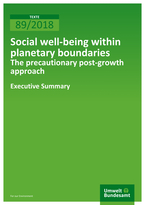 Social well-being within planetary boundaries