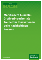 Non-Public Bulk Consumers as Drivers of Eco-Innovations and Demand Side Related Innovation Policy