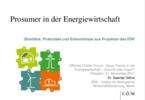 Prosumer in the energy system – overview, potentials and insights from IÖW projects