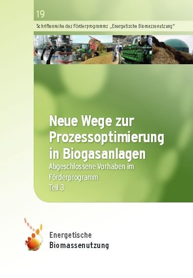 An Ecological and Economical Evaluation of Several Biogas Uprgrading Processes and Options for the Use of Biomethane