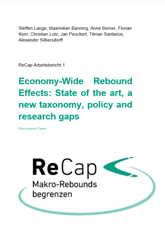 Economy-Wide Rebound Effects: State of the art, a new taxonomy, policy and research gaps
