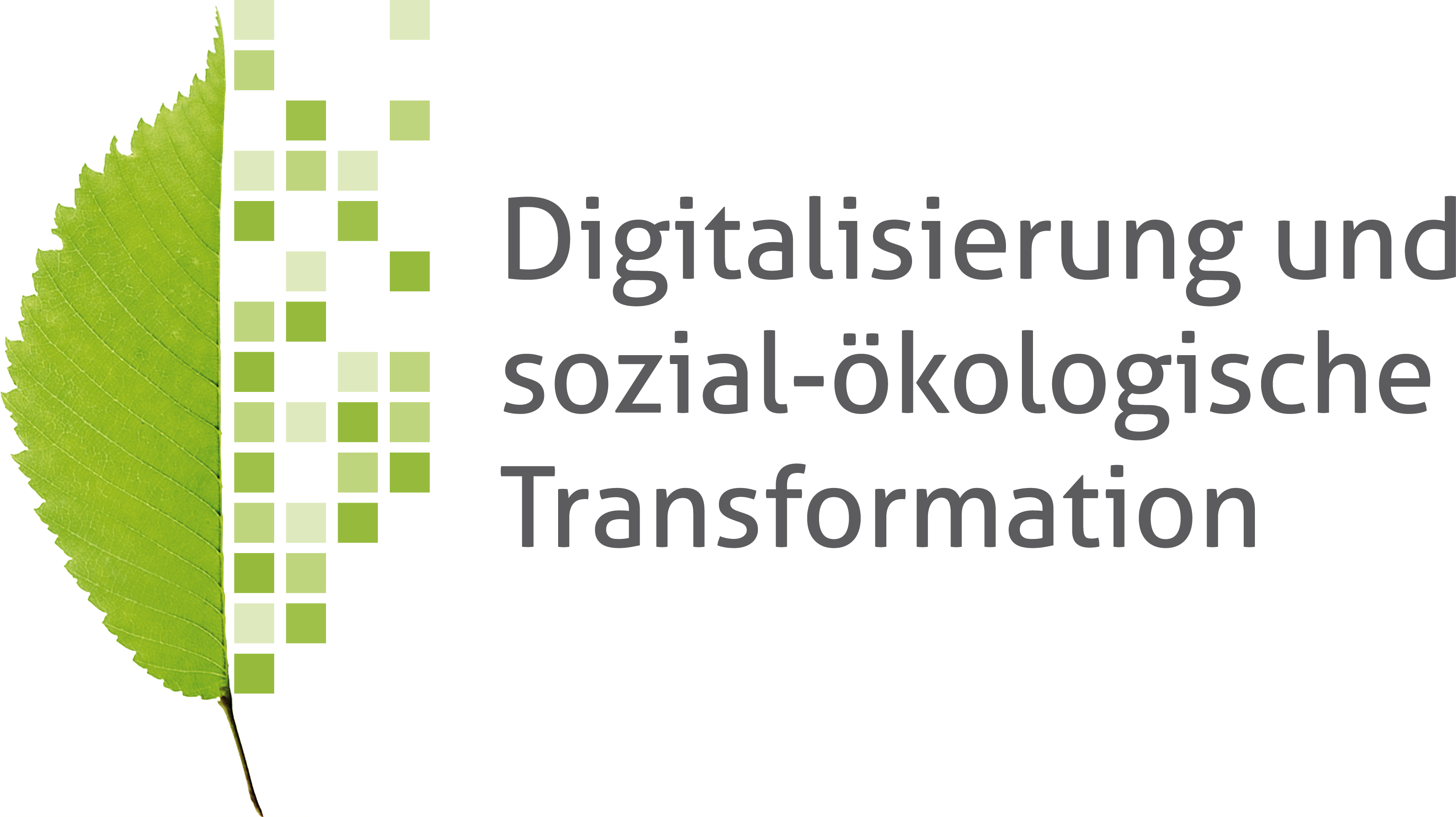 Digitalization and social-ecological transformation